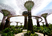 Gardens on the Bay 2
